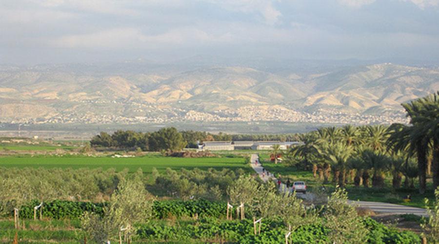 organic-kibbutz-sde-eliyahu